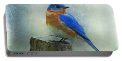 Eastern Bluebird II Portable Battery Charger