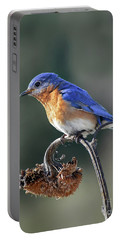 Eastern Bluebird In Spring Portable Battery Charger