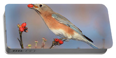 Eastern Bluebird With Berry Portable Battery Charger