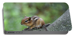 Eastern Chipmunk #2 Portable Battery Charger
