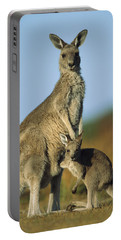 Eastern Grey Kangaroo And Her Joey Portable Battery Charger