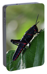 Eastern Lubber Grasshopper Portable Battery Charger by Richard Rizzo