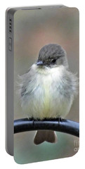 Eastern Phoebe 4 Portable Battery Charger