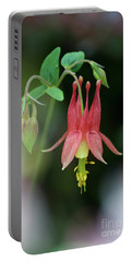Eastern Red Columbine - D010104 Portable Battery Charger by Daniel Dempster