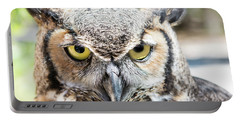 Eastern Screech Owl Portrait Portable Battery Charger