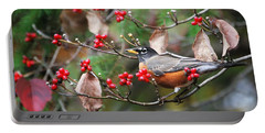 Easy Pickings Robin Portable Battery Charger