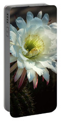echinopsis candicans - The Argentine Giant  Portable Battery Charger