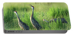 Sandhill Cranes In A Misty Meadow  Portable Battery Charger