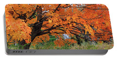 Edna's Tree Portable Battery Charger