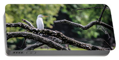 Portable Battery Charger featuring the photograph Egret Able by Ray Congrove