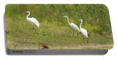 Portable Battery Charger featuring the photograph Egret Family 1 by Maria Urso