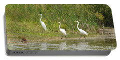 Portable Battery Charger featuring the photograph Egret Family 2 by Maria Urso