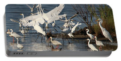 Egret Mania 2 Portable Battery Charger