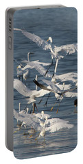 Egret Mania 3 Portable Battery Charger