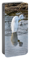 Egret Standing In A Stream Preening Portable Battery Charger