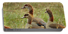 Portable Battery Charger featuring the photograph Egyptian Geese by Betty-Anne McDonald