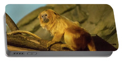Portable Battery Charger featuring the photograph El Paso Zoo - Golden Lion Tamarin by Allen Sheffield