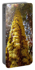 Elder Mossy Evergreen Portable Battery Charger