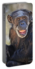 Elderly Chimp Enjoying The Warm Summer Afternoon Portable Battery Charger by Jim Fitzpatrick