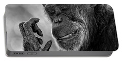 Elderly Chimp Studying Her Hand Portable Battery Charger