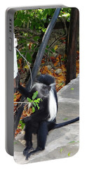 Electrical Work - Monkey Power Portable Battery Charger
