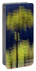 Elegance In The Park Vertical Adventure Photography By Kaylyn Franks Portable Battery Charger