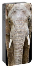 Elephant Face Closeup Looking Forward Portable Battery Charger by Susan Schmitz