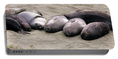 Elephant Seals Portable Battery Charger