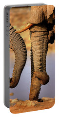 Elephant Trunks Interacting Close-up Portable Battery Charger