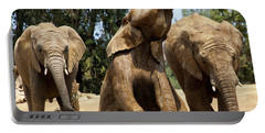 Elephants Portable Battery Charger