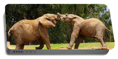 Elephants At Play 2 Portable Battery Charger