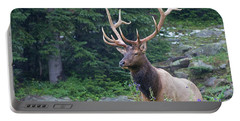 Portable Battery Charger featuring the photograph Elk 4 by Gary Lengyel