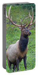 Portable Battery Charger featuring the photograph Elk 5 by Gary Lengyel