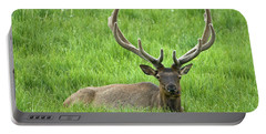 Portable Battery Charger featuring the photograph Elk 6 by Gary Lengyel