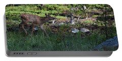 Baby Elk Rmnp Co Portable Battery Charger