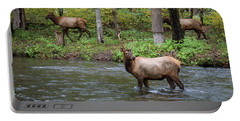 Elks By The Stream Portable Battery Charger