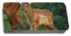 Elk Calf Arrives Portable Battery Charger