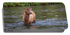 Elk In The Stream 3 Portable Battery Charger