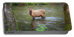 Elk In The Stream Portable Battery Charger