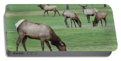 Elk On Golf Course Estes Park Colorado Portable Battery Charger