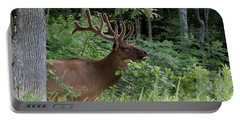 Elk Portrait Portable Battery Charger