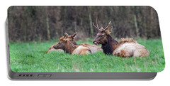 Portable Battery Charger featuring the photograph Elk Relaxing by Paul Freidlund