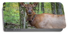 Elk In The Woods 2 Portable Battery Charger