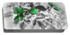 Emerald Green Of Ireland Portable Battery Charger