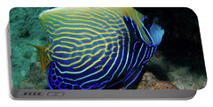 Emperor Angelfish, Red Sea 1 Portable Battery Charger