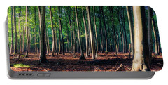 Portable Battery Charger featuring the photograph Enchanted Forest by Dmytro Korol