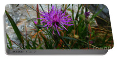 Portable Battery Charger featuring the photograph End Of Summers Joy by Janice Westerberg