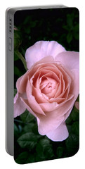 Portable Battery Charger featuring the photograph English Beauty Ambridge Rose by Louise Kumpf