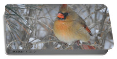 Enjoying The Snow Portable Battery Charger by Betty-Anne McDonald