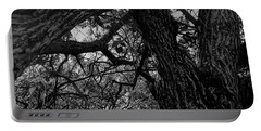 Enter The Woods In Black And White Portable Battery Charger